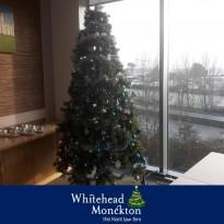 Christmas Tree Reveal