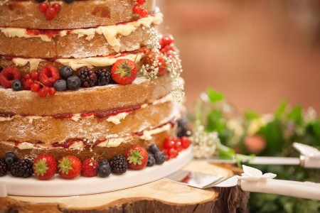 2 Tier Naked Wedding Cake