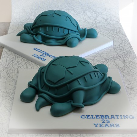 Turtle shaped cake
