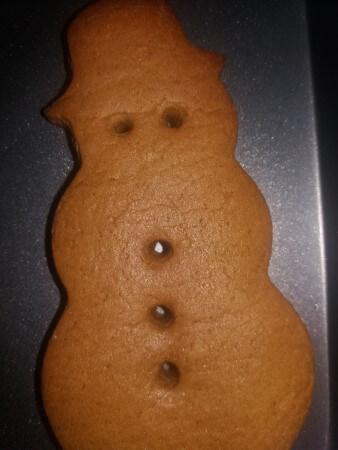 Festive Vegan Gingers