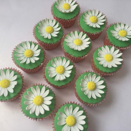 Daisy Garden cupcakes