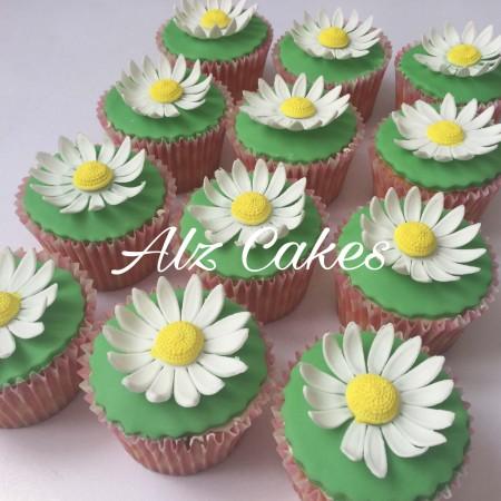 Daisys cupcakes - vanilla cupcakes boxes.