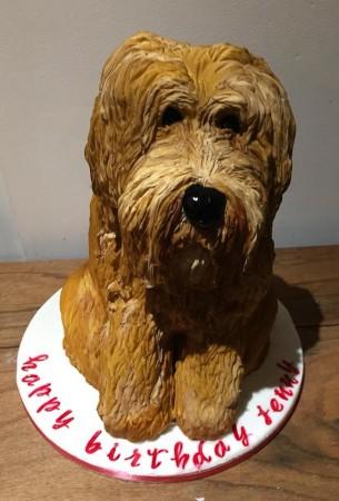 Carved   Dog Cake