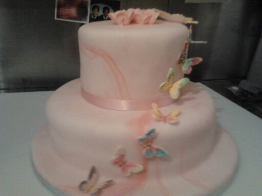 Two Tiered Butterfly Cake