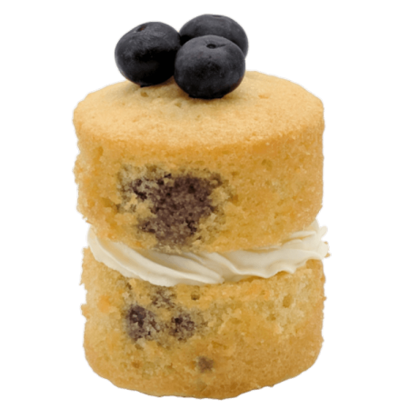 Lemon and Blueberry Miniature