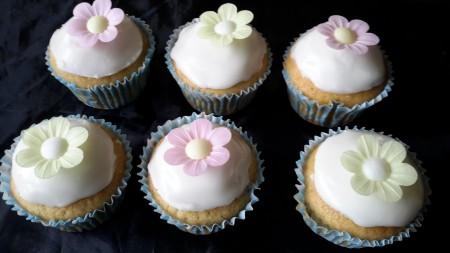 6 vegan vanilla cakes