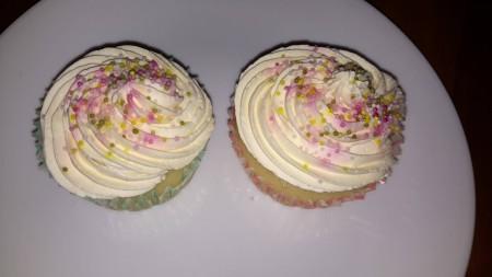 Vanilla  eggless cakes