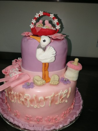 Baby Shower cake- Choose your colour