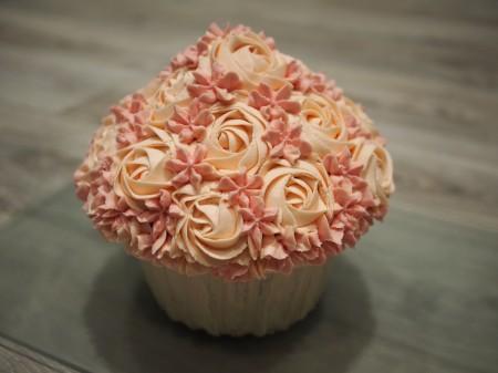 Giant cupcake or smash cake