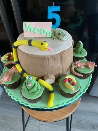 Awe Inspiring Reptile Cake For Goodness Cake Personalised Birthday Cards Xaembasilily Jamesorg