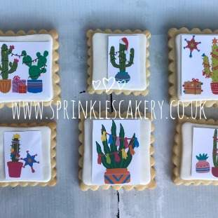 ***Postal*** Christmas Cactus Biscuit Box