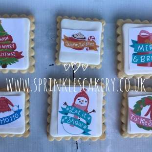 ***Postal*** Christmas Flamingo Biscuit Box