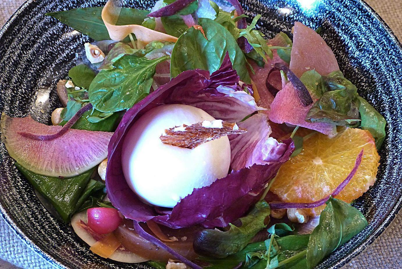 Burata cheese salad