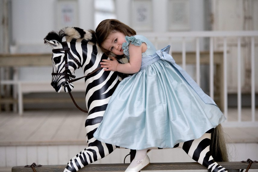 43-zebra-right-1