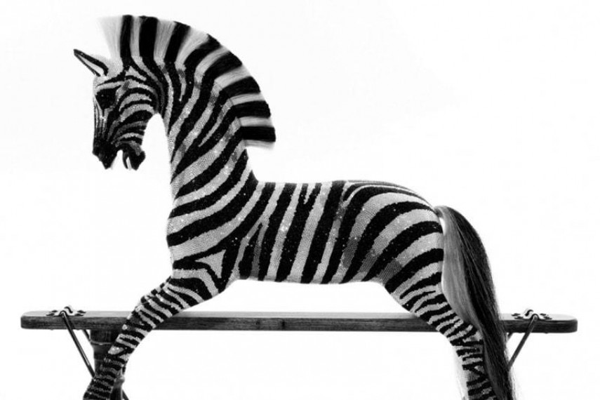 crystal-zebra-03-min