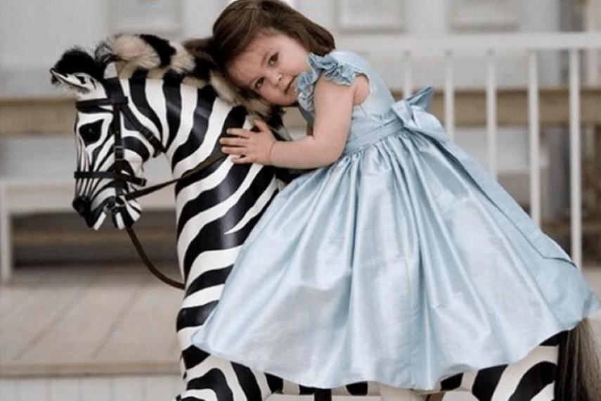 zebra-09-min